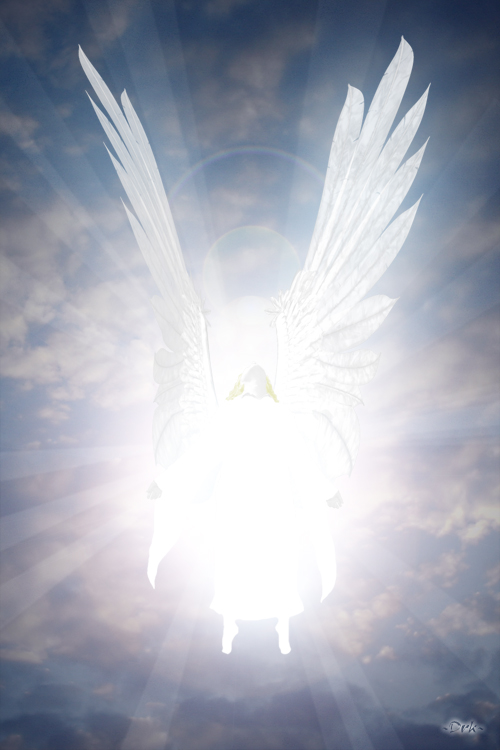 angel-of-light (1-16-14)