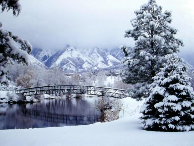 Winter Bridge (12-10-15)