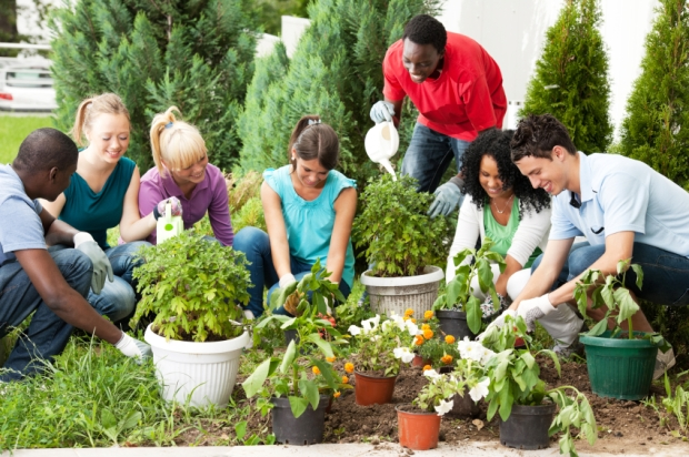 Group of teenage friends gardening.