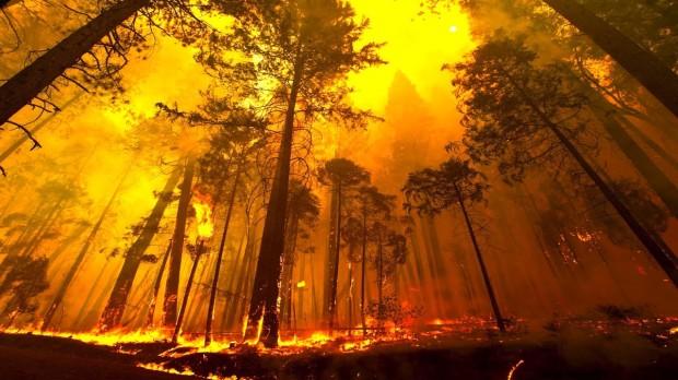 fire 2 (10-30-17)