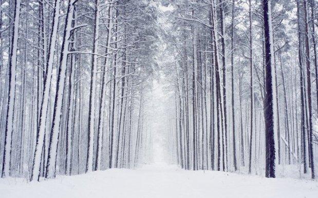 winter (2-19-18)