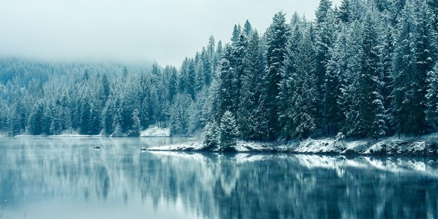 winter (2-8-18)