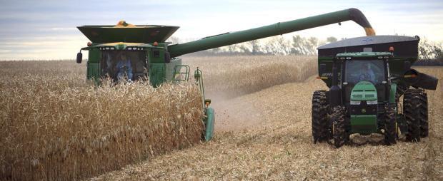 harvest 3 (6-14-18)