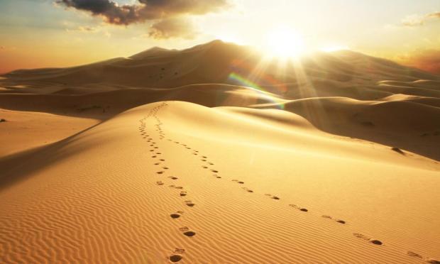 desert (10.13.18)